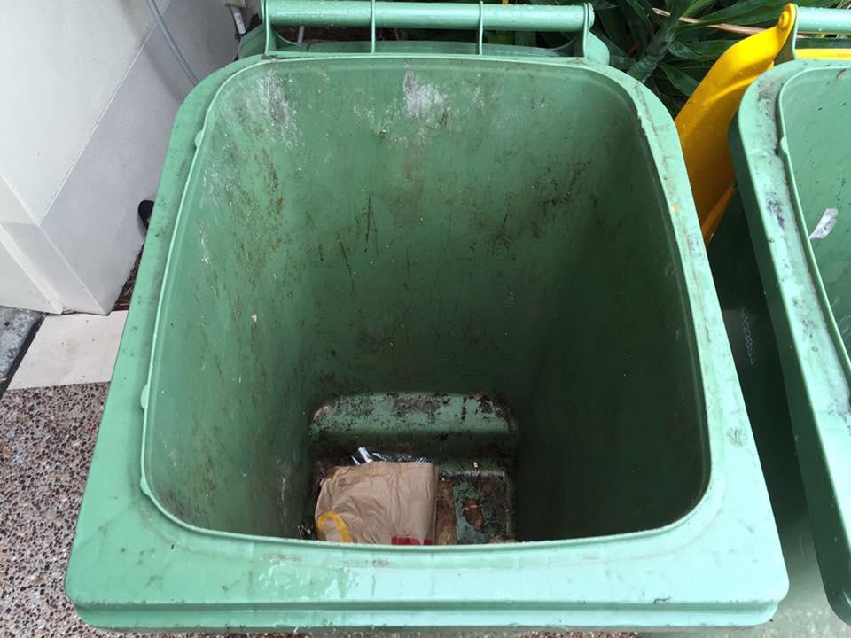 Before bin clean