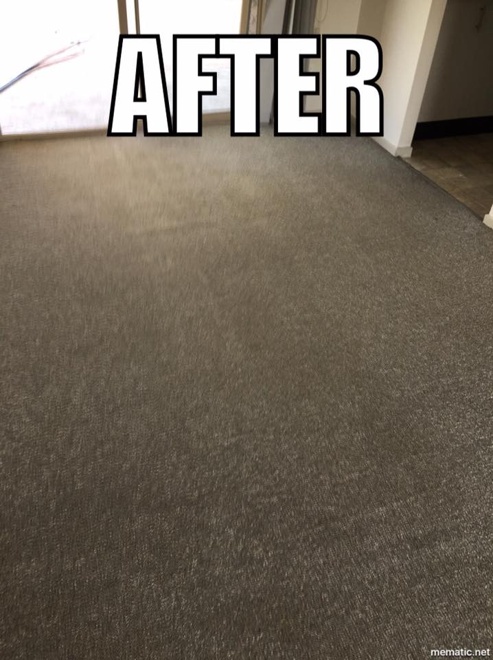 Carpet Cleaning #3